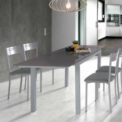 Mesa de Cocina de Cristal Extensible Gris 75817